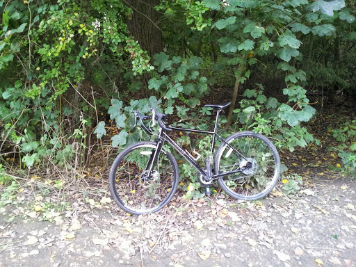 The (cyclo)Cross Revolution - Testing a Pinnacle Arkose Two (2/6)
