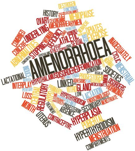 Female club athletes and exercise induced amenorrhea